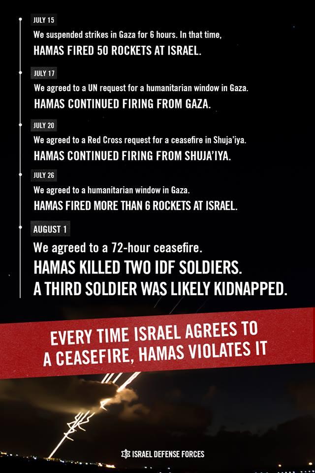 Graphic: IDF.
